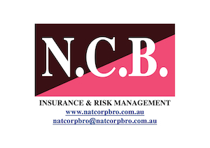 NatCorp Bro Insurance and Risk Management